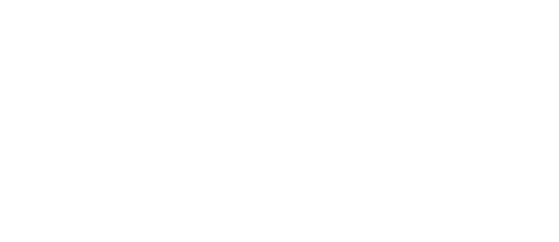skills to learn a language